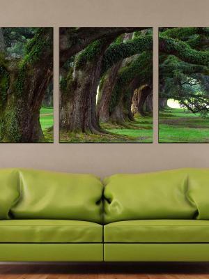 3 Parça Kanvas- 3D Ağaç Duvar Tablosu